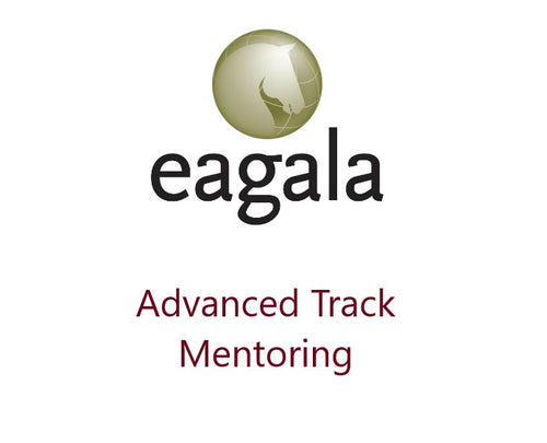 Mentoring Advanced Track