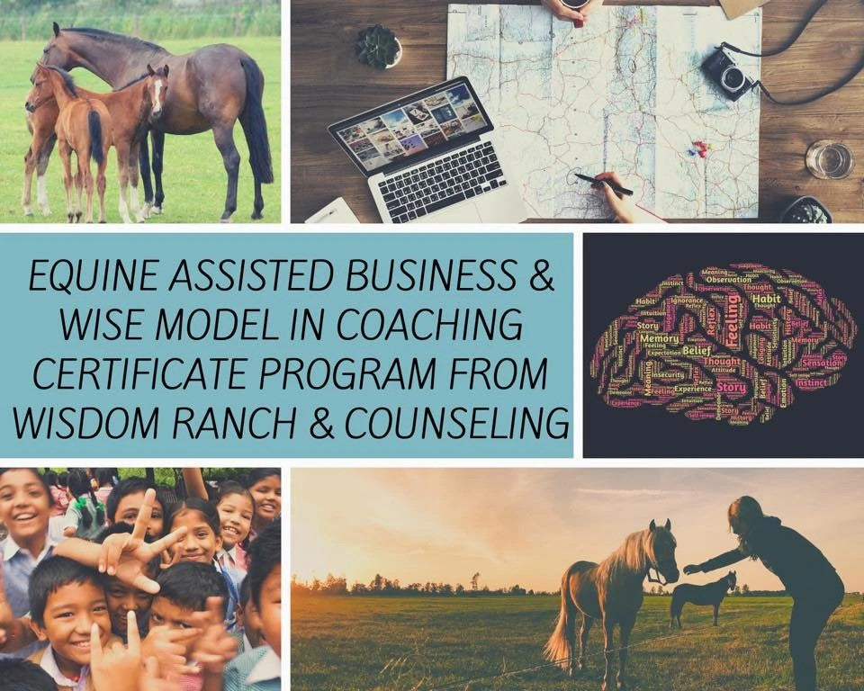 Welcome to Wisdom Ranch and Counseling Virtual Barnyard!