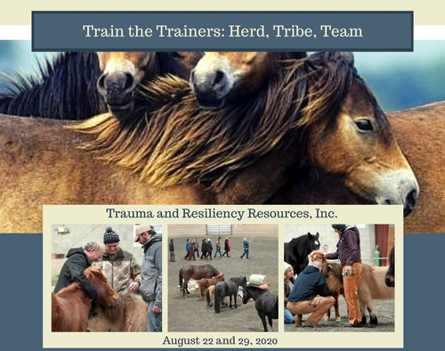 Train the Trainers: Herd, Tribe, Team