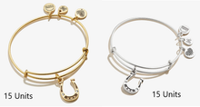 Alex and Ani Horse Shoe Bracelet