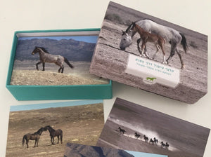Horses in the Room: The Horsepath Therapeutic Cards