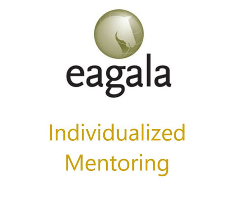 Mentoring Individualized