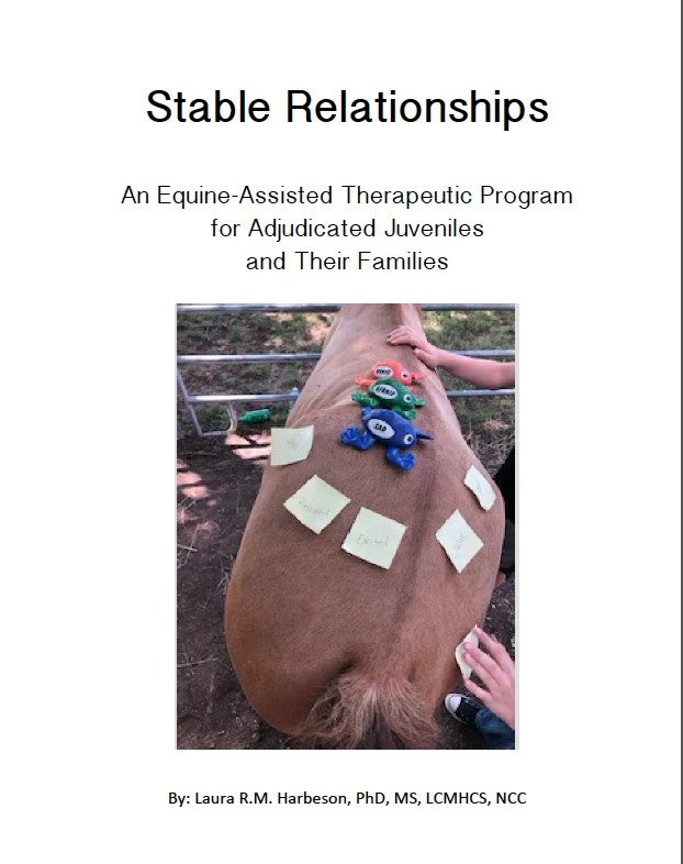 Stable Relationships: A Program for Adjudicated Juveniles and Their Families