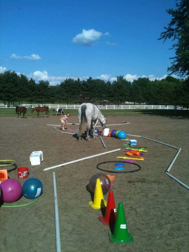 Introduction to Experiential and Horse Powered Reading