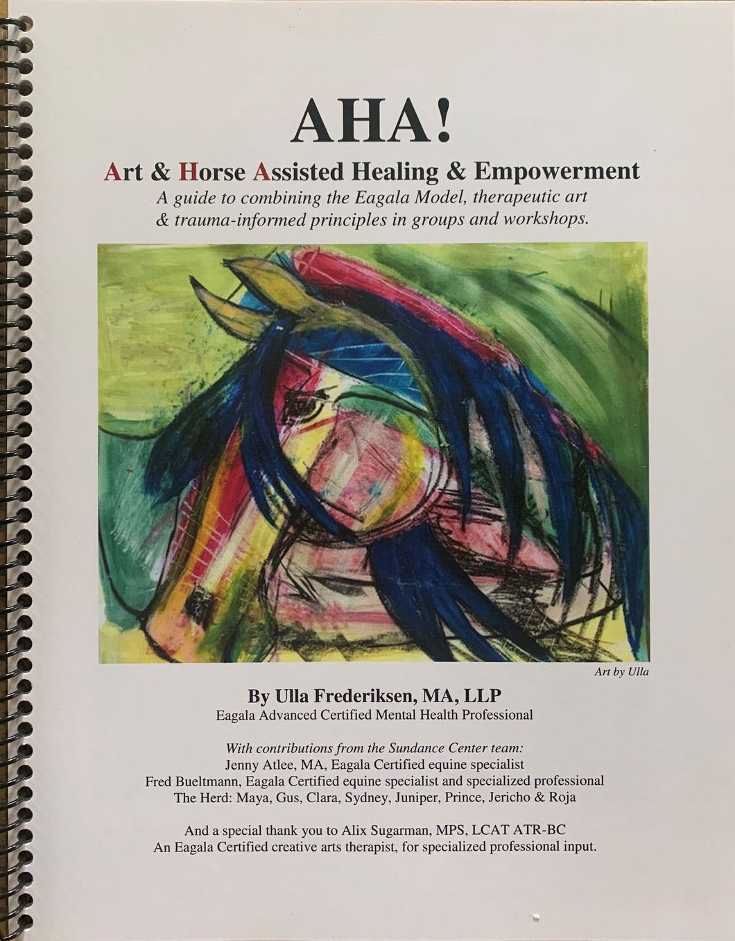AHA! Art & Horse Assisted groups and workshops