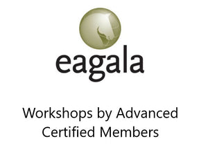 Workshops by Advanced Certified Members