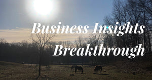 Business Insights Breakthrough - Horses Money And Chocolate Part 2 -Free Online Training