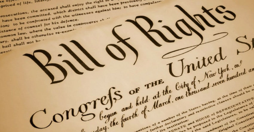Image result for bill of rights 1789