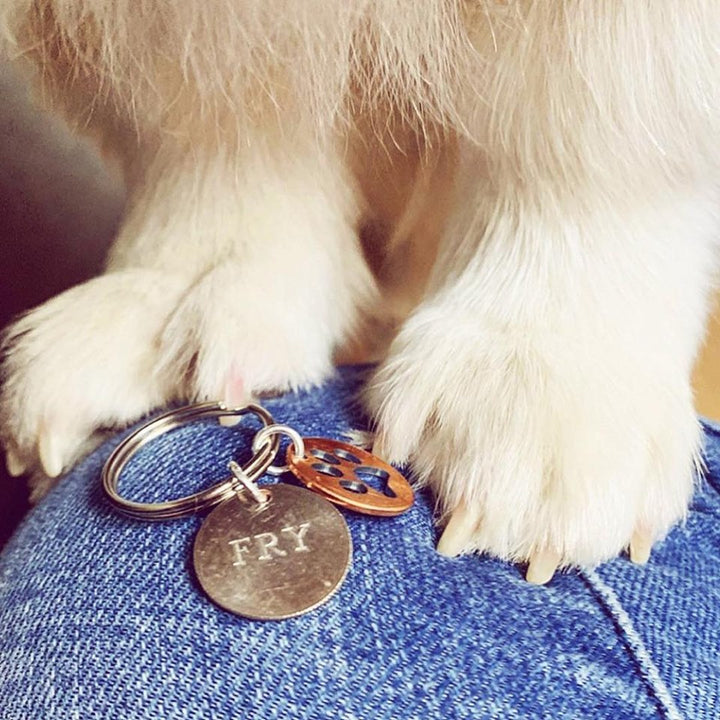Mariamor Paw Print Coin Keychain