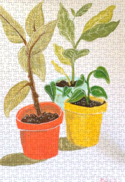 Potted Plants, Alisa Wismer