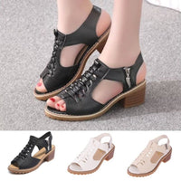 Women's Open Toe Block Heel Sandals Summer Pump Shoes Ankle Strap Ladies-sandals-Vinny's Digital Emporium