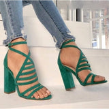 Thick High Heel Platform Gladiator Shoes Summer Nightclub Sandals Womens Pumps-shoes-Vinny's Digital Emporium