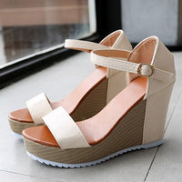 Women's Platform High Heel Sandals | Wedge Heel Sandals-wedge heel sandals-Vinny's Digital Emporium