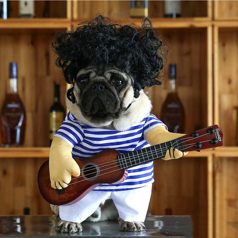 Dog's Guitar Costume