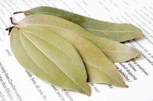 Cinnamon Tree Leaves - Burlap & Barrel Single Origin Spices