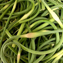 Load image into Gallery viewer, Garlic Scape Pickle *Collaboration*