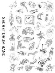 Secret Drum Band: The Hylaeus Project - Digital Download