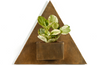 Odran Brass Triangular Wall Planter