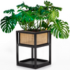 Sopio Reversible Cane Planter