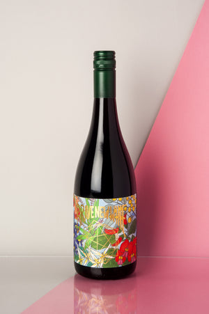 Brave New Wine Pi Oui 2019