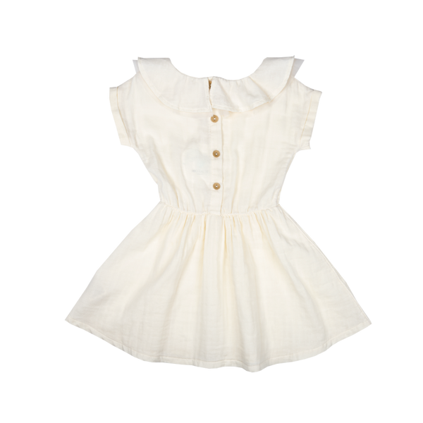 Lylah Collar Dress