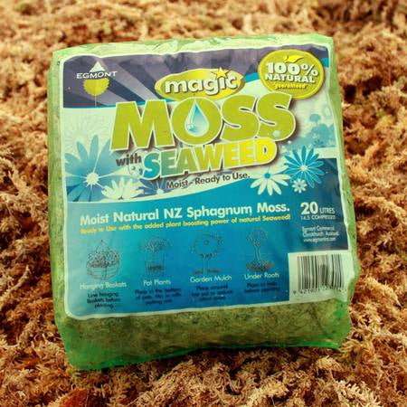 Magic Moss - Long Stranded Moss & Seaweed - semi compressed - all sizes