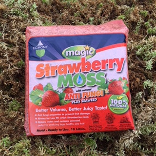 Strawberry Moss - Milled Moss and Seaweed -which adds Great Flavour