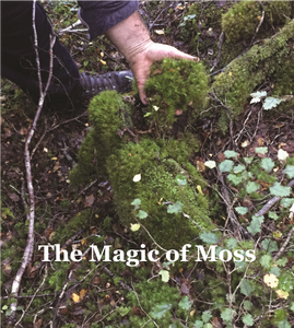 The Magic of Moss Workshop