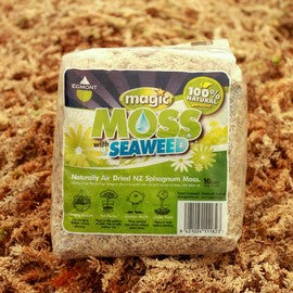 Naturally Air Dried Sphagnum - Traditional dried moss with seaweed to boost growth.