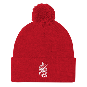 Photographer Hat  Pom Pom Knit Cap - Shobbek