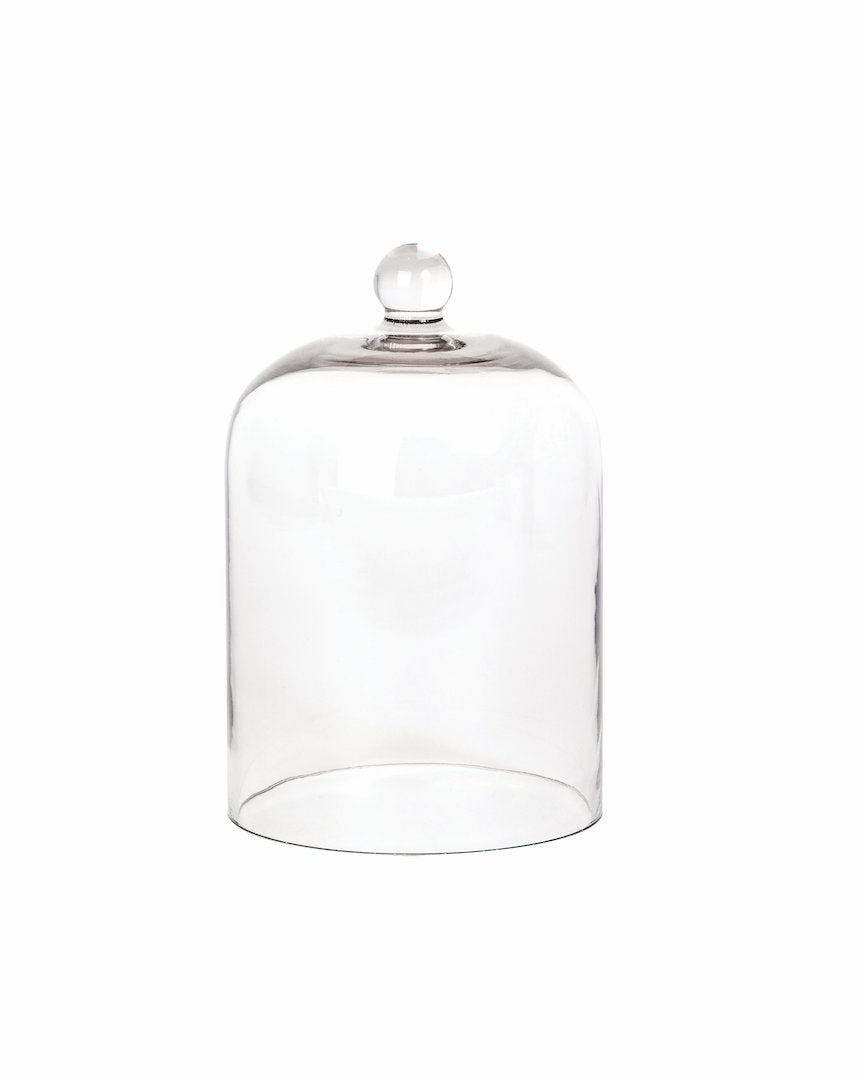 Palm Beach Collection Glass Cloche
