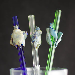 Turtle Glass Straw