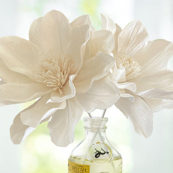 Signature Diffusers | Enchanted Lily