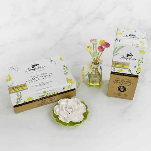 Ceramic Collection Gift Set
