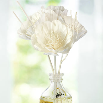 Signature Diffusers | Tulip Angelique