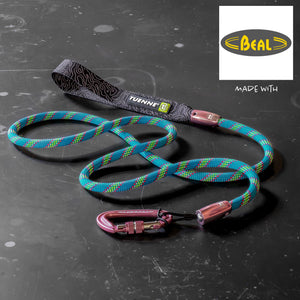 custom climbing rope dog leash carabiner