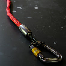 climbing rope dog leash carabiner red