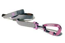 gray and pink rock climbing dog leash. locking carabiner. patented dog leash