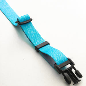 adventure dog collar carabiner