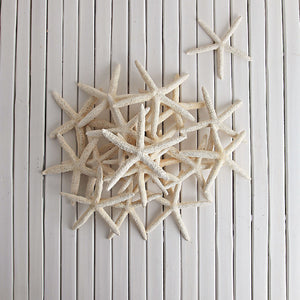 White/Cream Finger Starfish 25cm