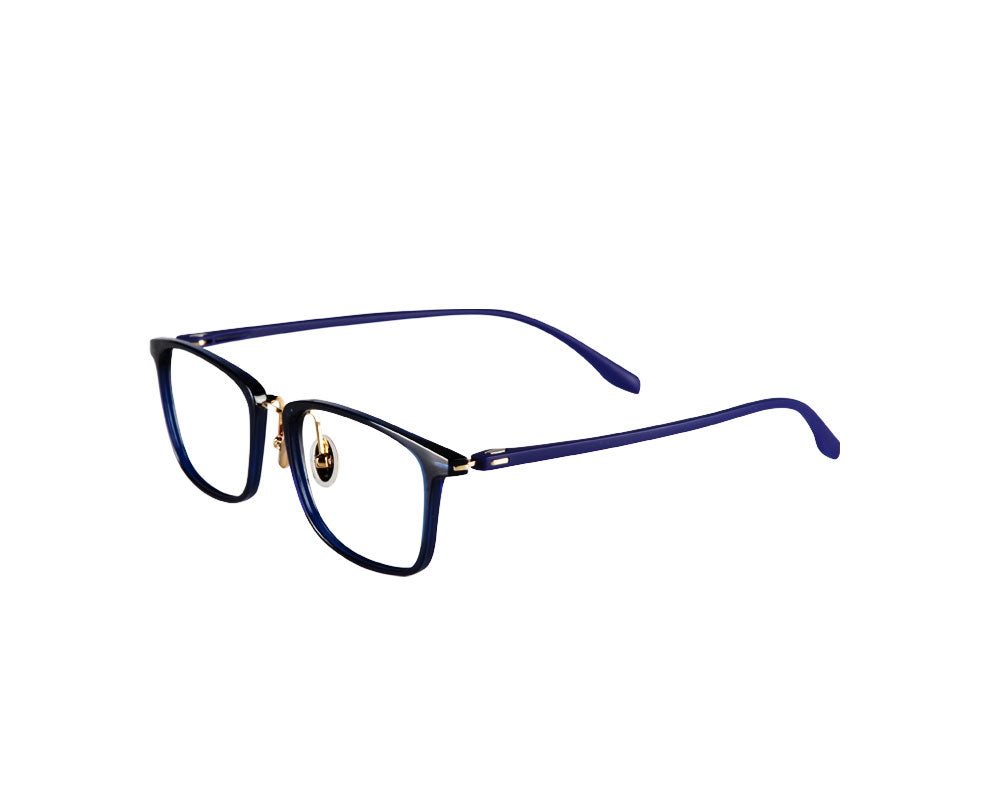 Fabian Bee Eyeglasses