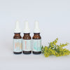 Set of Three Mini Serums/Glow Ahead, Potent C., + Physical Attraction