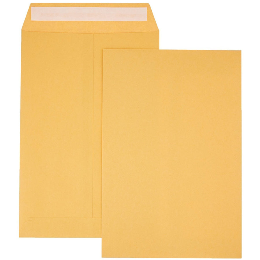 "Kraft Envelopes, 4-pc 10"" x 15"""