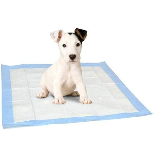 Pet Training pads, 3/pk