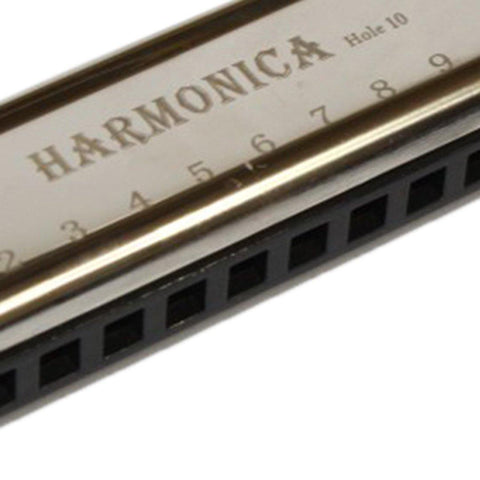 10 Hole Harmonica price in Nepal