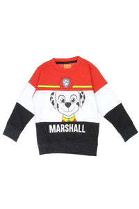 Boys paw patrol 2-4t color block sweatshirt