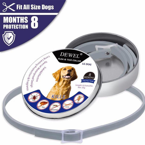 Image of flea collar for dogs