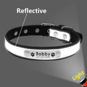 Personalized Reflective Pet Collar