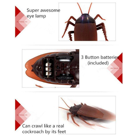 Image of remote control cockroach toy