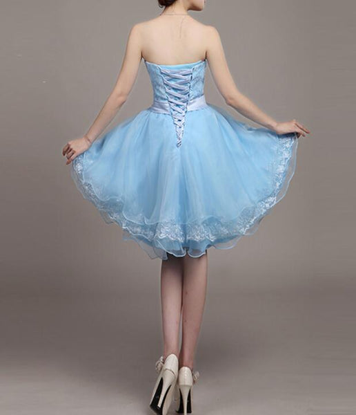Light Blue Lace and Organza High Low Dresses, High Low Party Dresses, Cute Teen Dresses